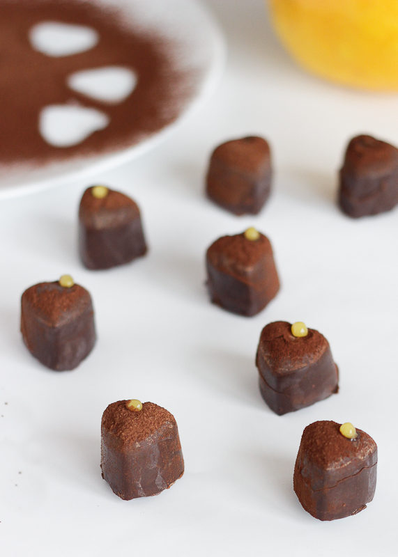 Grapefruit Chocolates-10